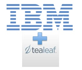 IBM Acquires Tealeaf Technology Inc.