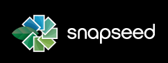 Google acquires Snapseed and Nik Software
